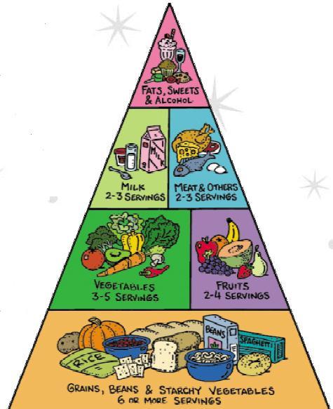 هرم المعلومات Food-pyramid